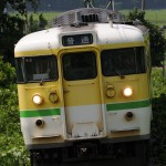 弥彦線の115系