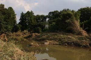 現場付近にできた池