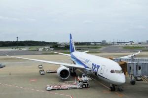 今回の搭乗機JA806A