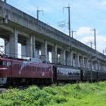 EF81 97牽引の旧客7両