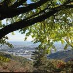 太平山へ紅葉狩りに行きました
