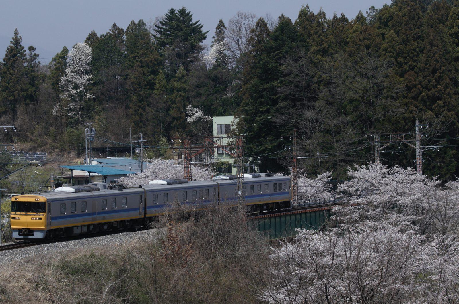 桜咲く飯田線を走るドクター東海